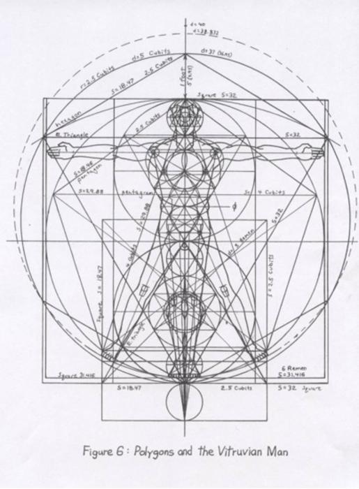 Anatomical Man Diagram Dimensions Block And Schematic Diagrams