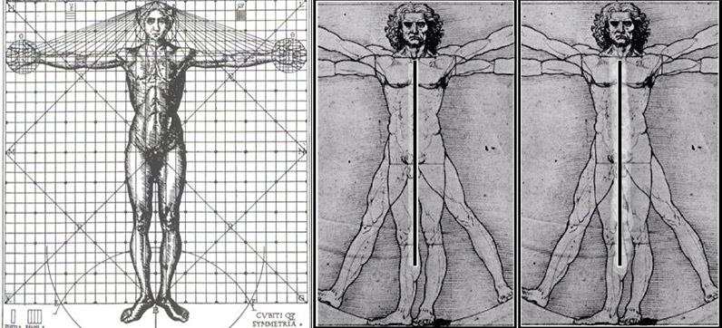 Leonardo da Vincis A Nude Man from the Front: a fusion of